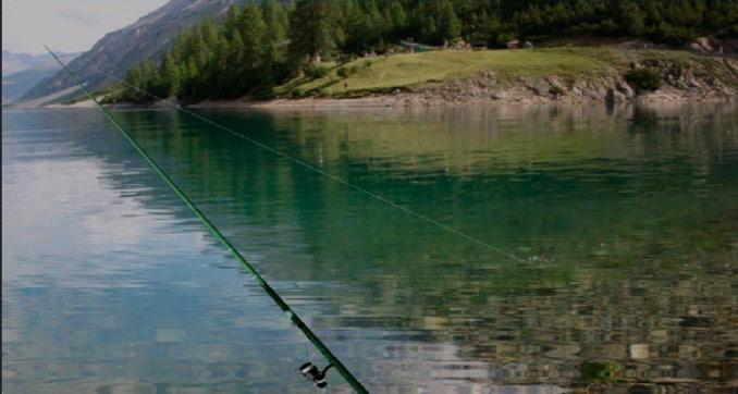 TrueFish 2.0 рыбалка