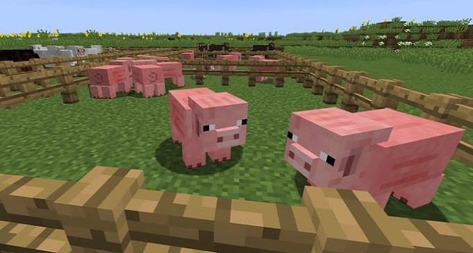 Как разводить скот в Майнкрафте