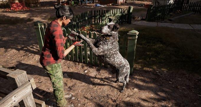 ТОП 17 игр про лучших друзей человека на ПК. Игры про собак