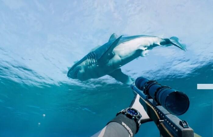 игры про акул на пк