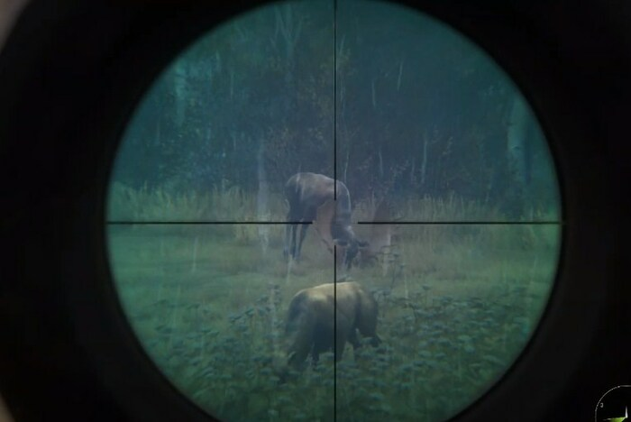 игры про охоту на пк
