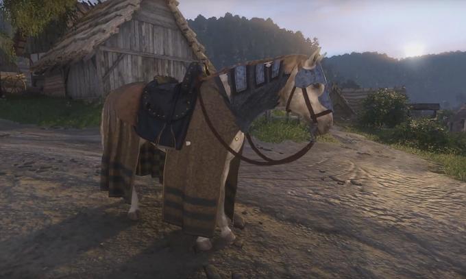 Kingdom Come: Deliverance - где купить и как выбрать лошадь