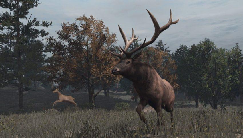 Red dead redemption 2: легендарные животные