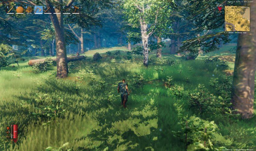 Виды древесины в игре Valheim