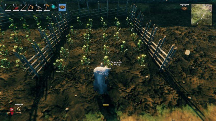 мод plant grow progress в игре valheim