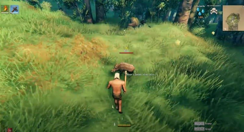 Охота на кабана в Вальхейме