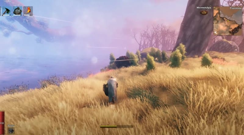 Равнины в игре Valheim