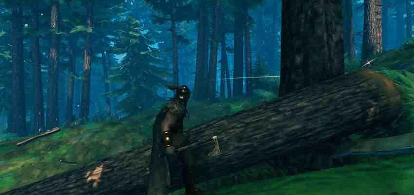 Valheim: цельная древесина как получить (добыть)
